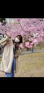 風景,公園,花,春,カメラ,桜,木,綺麗,全身,olympus,北海道,日差し,満開,楽しい,樹木,人,お散歩,ミラーレス一眼,くもり,おさんぽ,Spring,マスク,桜の花,日中,さくら,ブロッサム,春の日