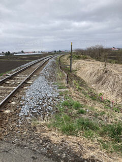 どこまでも続く北海道 宗谷線の線路の写真・画像素材[4394975]