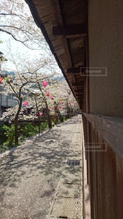 温泉 - No.443198