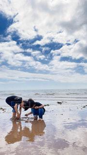 海で遊ぶ半袖兄弟の写真・画像素材[4554217]