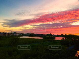 夕暮れ時の都市の景色の写真・画像素材[964392]