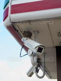 コンビニの監視カメラに作られたツバメの巣の写真・画像素材[4406746]