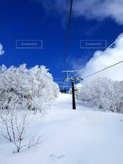 雪に覆われた列車の写真・画像素材[4407457]