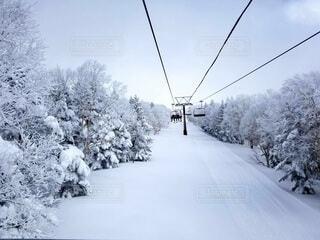 雪に覆われた斜面をスキーに乗っている男の写真・画像素材[4407462]