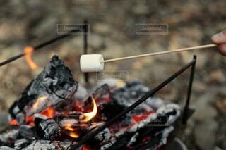 マシュマロを焚き火でローストの写真・画像素材[4409439]