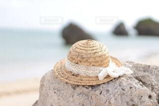 夏の忘れ物の写真・画像素材[4677929]