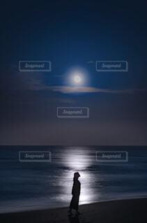 Moon  Lightの写真・画像素材[4461841]
