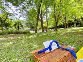 公園でピクニックの写真・画像素材[4410801]