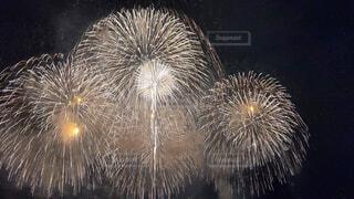 最後の花火の写真・画像素材[4412566]