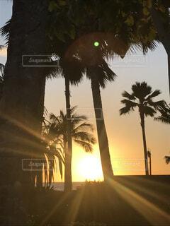 ハワイの夕日の写真・画像素材[4416402]