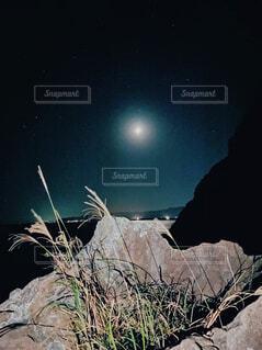 夜景の写真・画像素材[4414071]