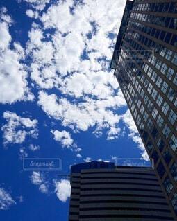 暑さの中見上げたビル街の夏空の写真・画像素材[4721239]