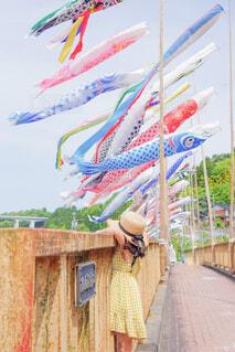 橋から見上げる鯉のぼりの写真・画像素材[4416153]