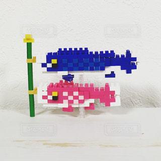 魚の写真・画像素材[467571]