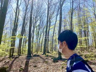 森林の中を歩く男性の写真・画像素材[4432717]