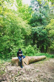 森林の中で本を読む男性の写真・画像素材[4443100]