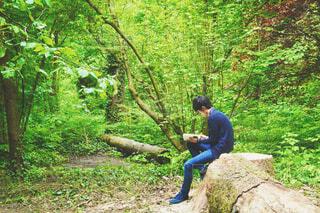 森林の中で本を読む男性の写真・画像素材[4443102]