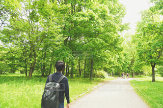 森林の中を歩く男性の写真・画像素材[4443164]