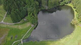 自然,屋外,湖,水面,山,樹木,空撮,草木