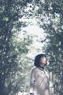 木のトンネルの写真・画像素材[4431167]