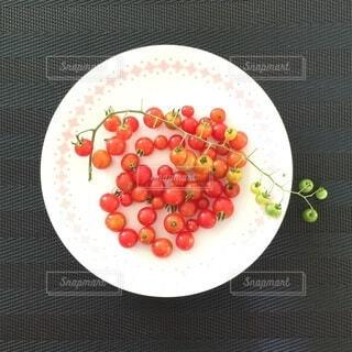 マイクロトマトの写真・画像素材[4655016]