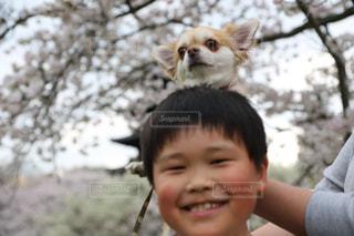 小さな子供がカメラで笑っての写真・画像素材[1686473]