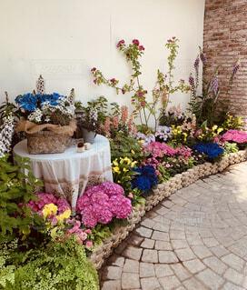 花園のクローズアップの写真・画像素材[4438184]