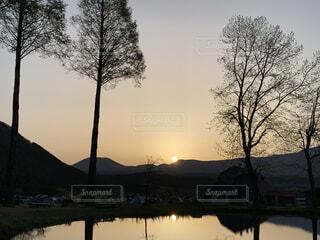 水の体の隣にある木の写真・画像素材[4438412]
