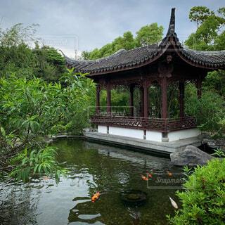 水の体の上に蘭蘇中国庭園の写真・画像素材[4440055]