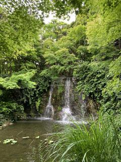 水の体の上に大きな滝の写真・画像素材[4440101]