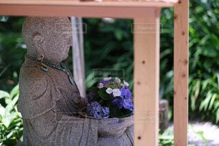 紫陽花とお地蔵様の写真・画像素材[4591620]