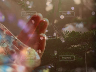 近くにガラスのアップの写真・画像素材[932245]