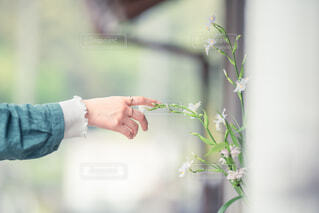 花を持っている人の写真・画像素材[4446590]
