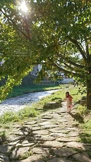 川沿いを散歩する女の子の写真・画像素材[4463044]