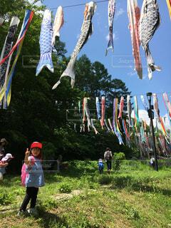 鯉のぼりのある公園にての写真・画像素材[4512861]