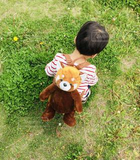 リュックを背負う男の子の写真・画像素材[4588692]