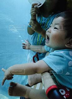 初めての水族館に喜ぶ赤ちゃんの写真・画像素材[4612847]