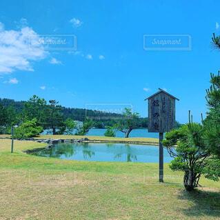 背景に木々のある大きな緑のフィールドの写真・画像素材[4549533]