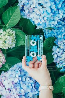 花を持つ手の写真・画像素材[4557320]