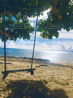 海辺のブランコと木漏れ日の写真・画像素材[4466792]