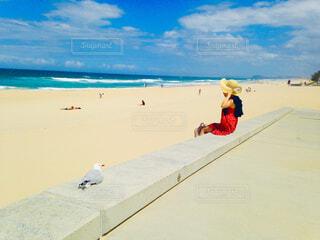 海辺で座る赤いワンピースの女性とカモメの写真・画像素材[4467902]