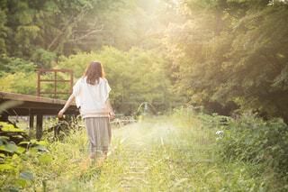緑が生い茂る廃線の線路を歩く女性の写真・画像素材[4468190]