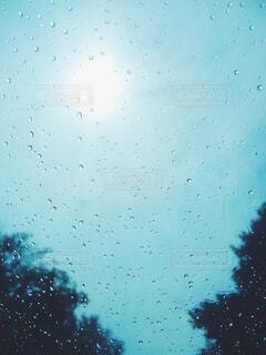 雨粒がついた青いビニール傘越しの空の写真・画像素材[4517910]