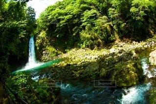 滝と渓流の写真・画像素材[4462700]