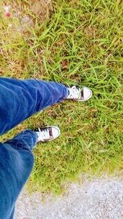 草むらを歩く人の足もとの写真・画像素材[4464240]