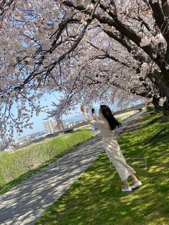 木の隣に立っている男の写真・画像素材[4588542]