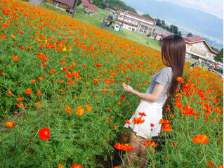 野原で花を持っている人の写真・画像素材[4588773]