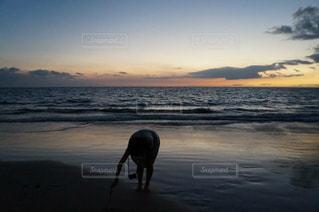 夕焼けと海と私の写真・画像素材[978089]