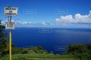 空と海と緑の写真・画像素材[978119]