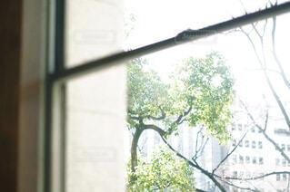 窓から見える外の風景の写真・画像素材[4500507]